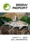 Titelseite BSSW-Report 1-2011 Frontseite