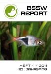 Titelseite BSSW-Report 4-2011 Frontseite