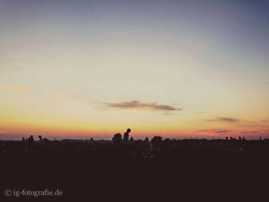 Tempelhofer Feld: Bild des Tages vom 14. Juli 2014