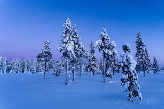 Polarkreis-Blaue-Stunde-1