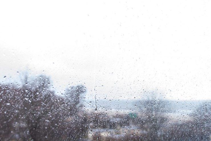 Fotomotiv: Regen im Herbst