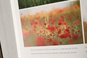 Buch-Blumen-fotografieren-2