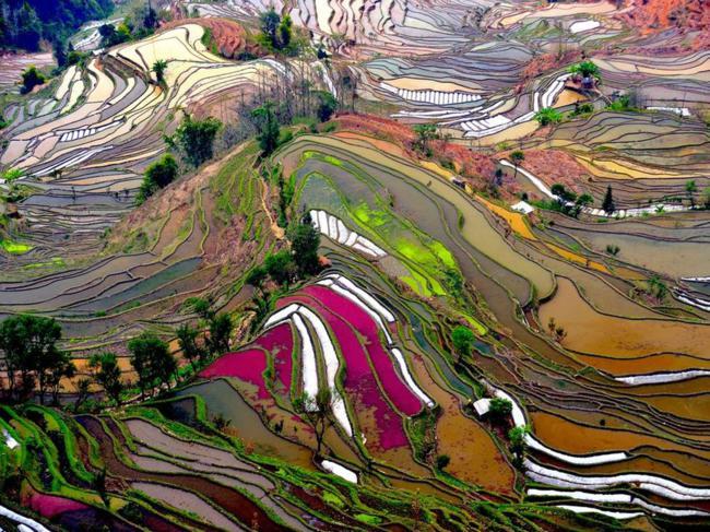 paisagens_coloridas_06