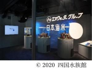 四国水族館 日本海水ブース