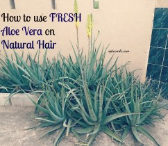 aloe-vera Tips & Tricks