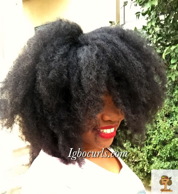 img_1976 How To Get A Soft Voluminous 'Fro aka Heatless Blowout