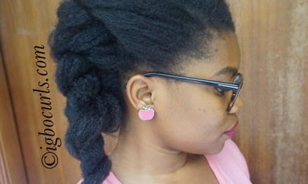 Hairstyle for the Week: Double Flat Twists