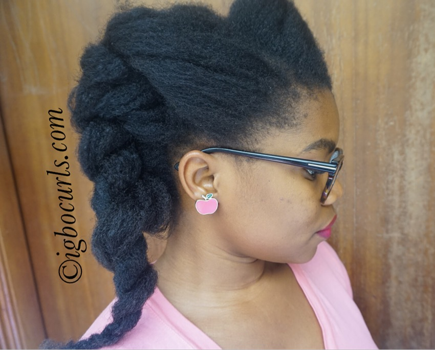 IMG_8688 Hairstyle for the Week: Double Flat Twists
