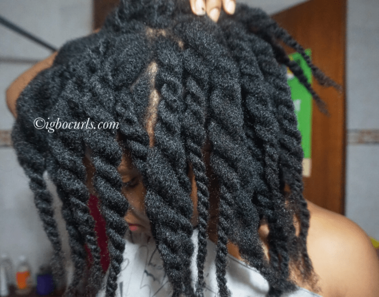 IMG_92161 10 Tips To Help Prepare Natural Hair for Protectivestyles