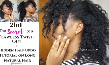 2 in 1-The Secret To A Flawless Twist Out + Hidden Half Up Hairstyle