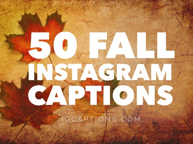 50 best party captions for instagram party pictures - Cute Christmas Captions
