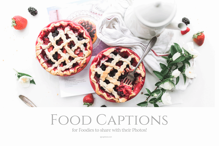 food captions for foodies to share their photos