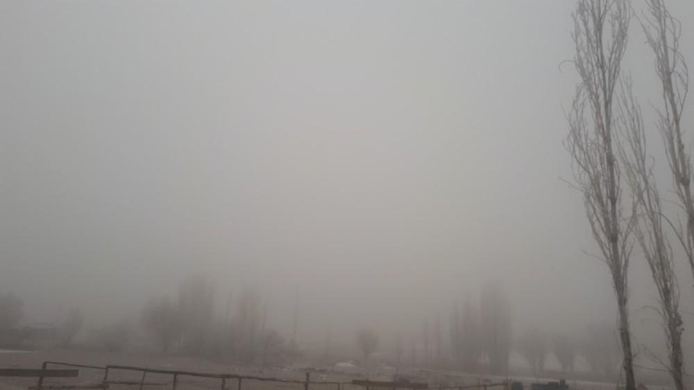 Tuzluca'da don ve sis etkili oldu