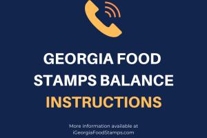Georgia food Stamps Balance instructions