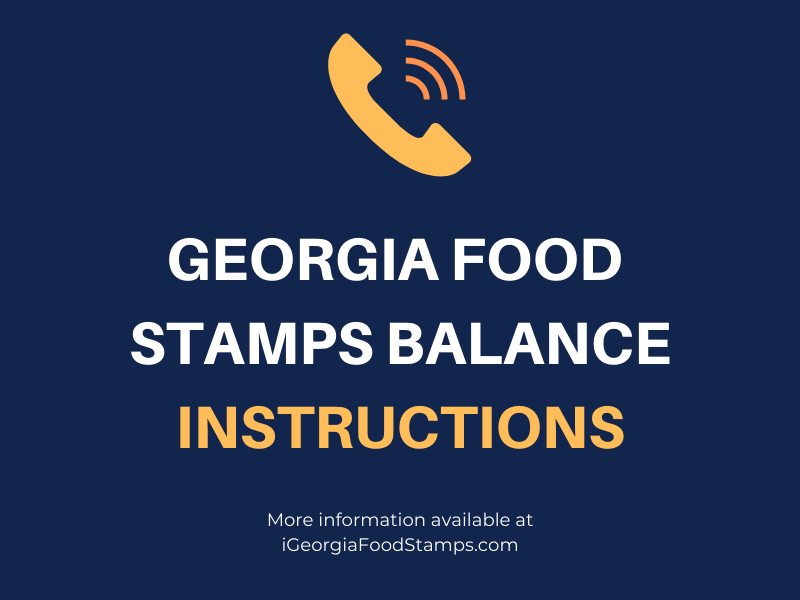 Georgia food Stamps Balance instructions