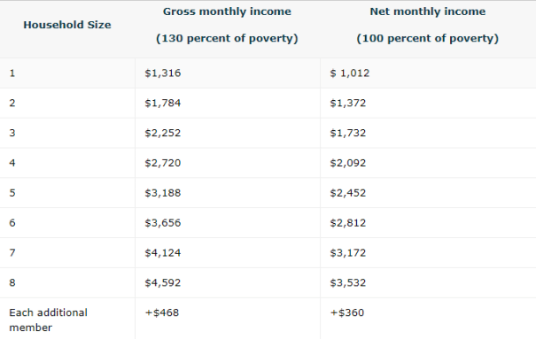 Georgia Food Stamps Income Limit Net Income Chart for 2019
