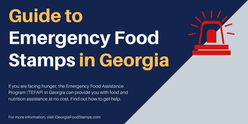 Guide to Emergency Food Stamps in Georgia