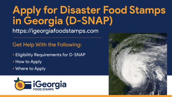 """Apply for disaster food stamps in Georgia"""