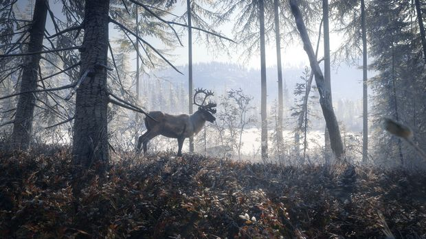 theHunter: Call of the Wild Medved Taiga Torrent Download