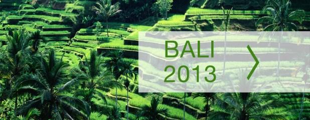 bali-2013