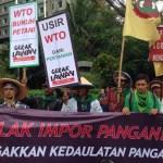 Kumpulan Informasi Oganisasi Perdagangan Dunia WTO