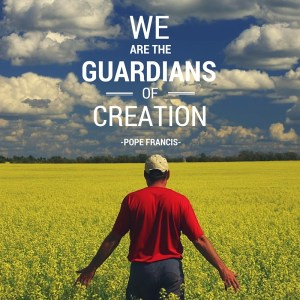 Pope Francis - We are guardians of creation