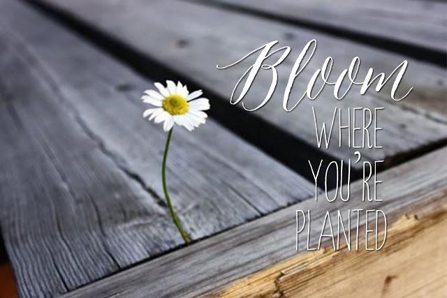 Source: missionarymai.blogspot.com