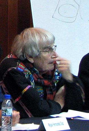 Carlos Lenkersdorf