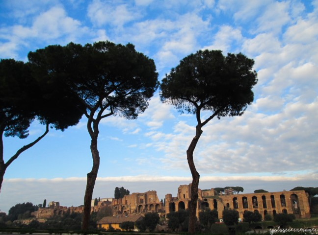 Vista delle rovine del Circo Massimo, Roma