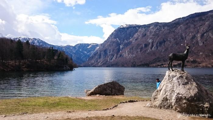 Vista del Lago di Bohinj, in Slovenia