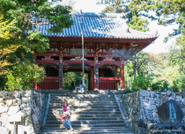 Portale d'ingresso del tempio Nariaiji (Amanohashidate)