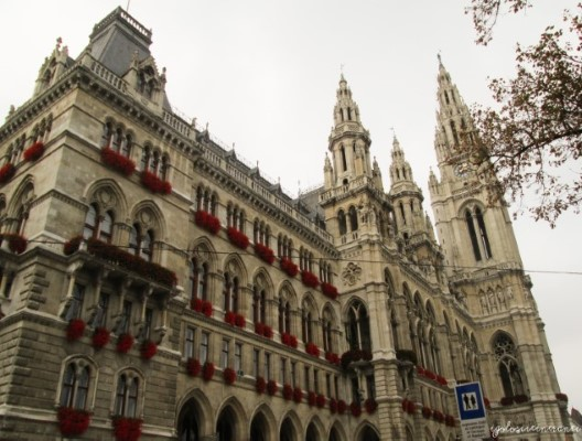 Vista posteriore del Rathaus di Vienna