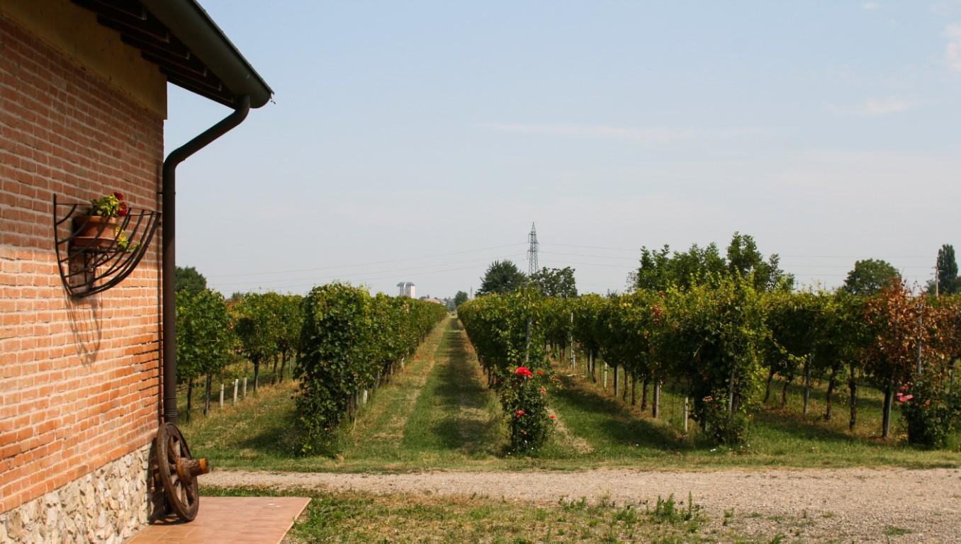 Tour gastronomico a Parma, alla scoperta di tre prodotti del territorio