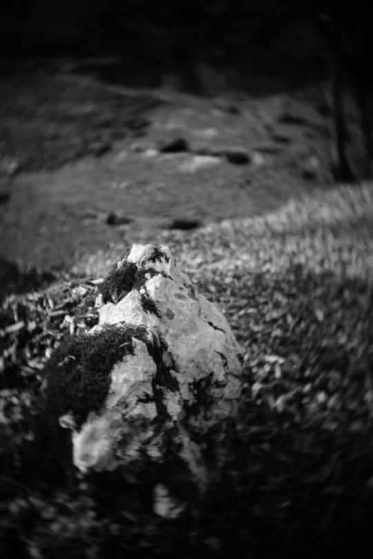 Prvi svjetski kamen