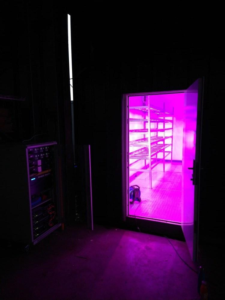 Low Energy LED Urban Farm