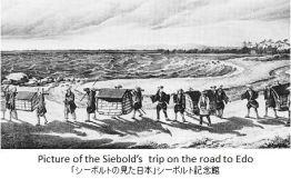 siebold-edo-x01