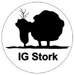 Logo IG Stork