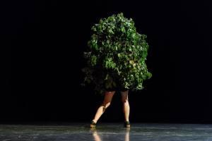Irina Lorez - I Am Tree