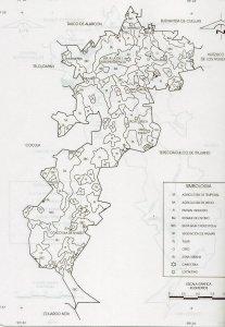 Agricultura y Vegetación en el municipio.
