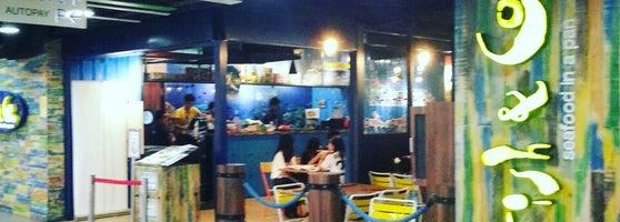 Usj 8 Fish Shop