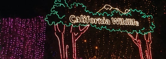 Bakersfield Zoo Christmas Lights