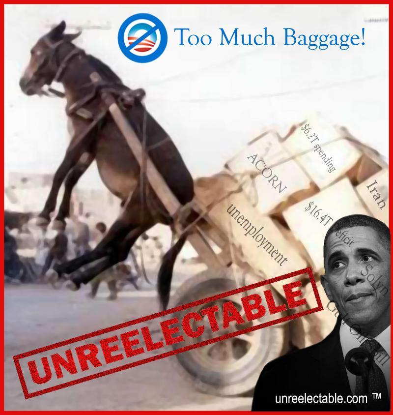 Obama Donkey Unreelectable