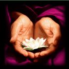 125 grateful lotus