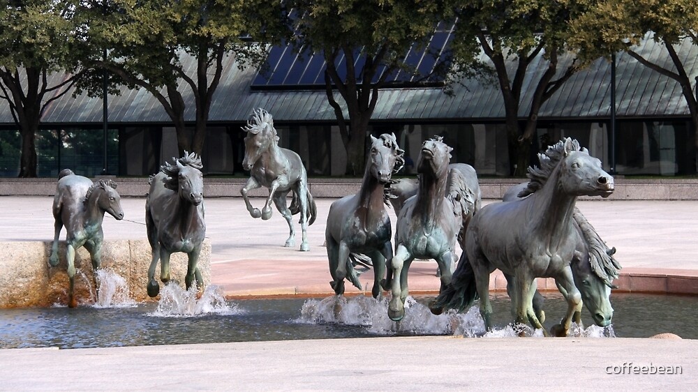 The Mustangs Of Las Colinas By Coffeebean Redbubble