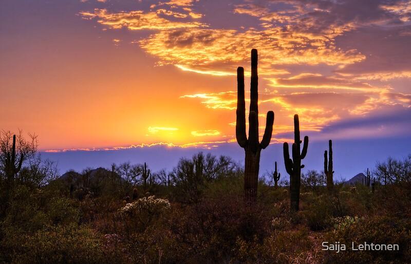 Southwest Desert Sunset By Saija Lehtonen Redbubble