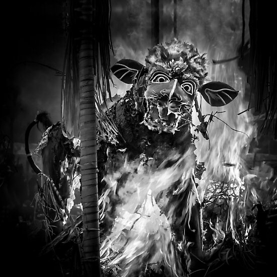'Bali Cremation Bull' Photographic Print by Glen Allison