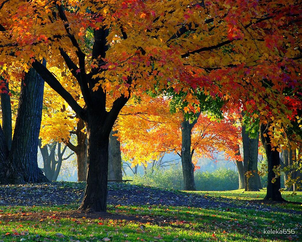 Good Morning Autumn By Keleka656 Redbubble