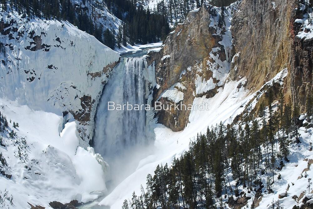 The Winter Melt Lower Yellowstone Falls By Barbara