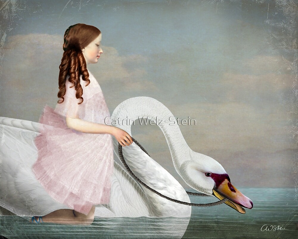 Ride A White Swan By Catrin Welz Stein Redbubble