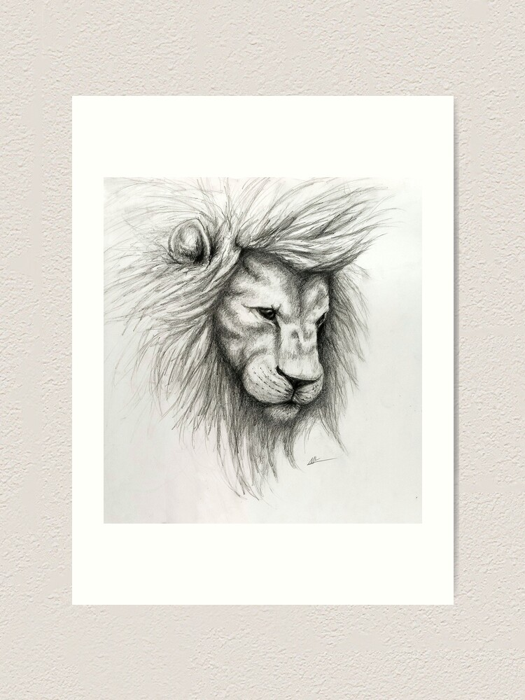 Lion Pencil Sketch Art Print By Rosieskies Redbubble